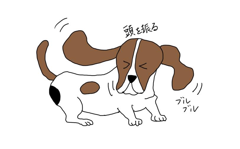 頭を振る犬